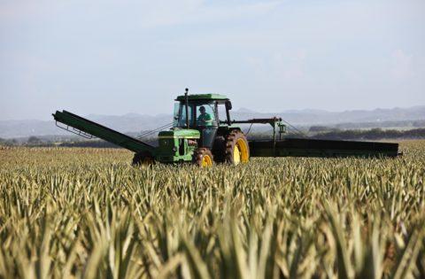 formation mécanique agricole cfa17